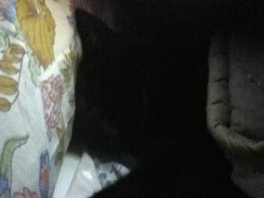 On dort bien dans le lit