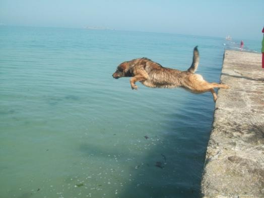 quand je saute de environ 2métre de haut dans la mer^^