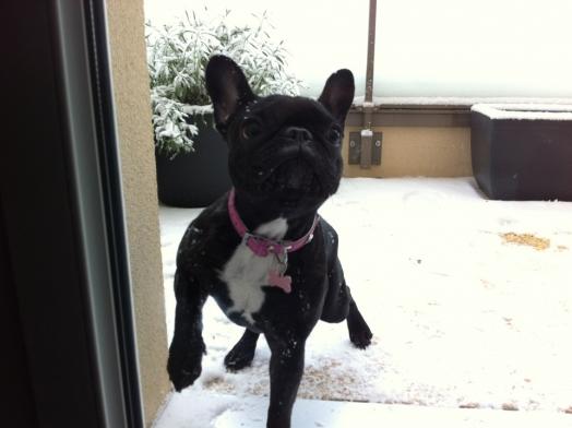 J'adore la neige 2 !!!