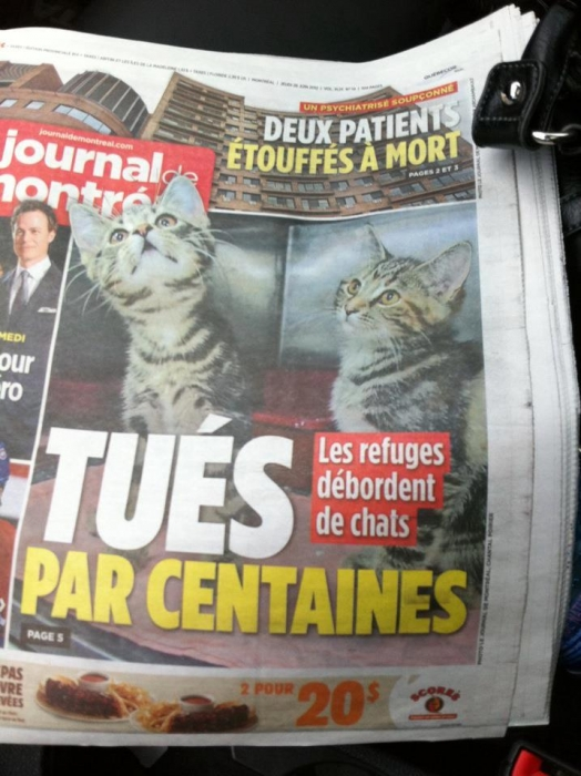 Merci au Journal de Montreal de prendre la peine de parler de cette triste réalité !!!