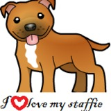 staffordshire Bull Terrier TEA