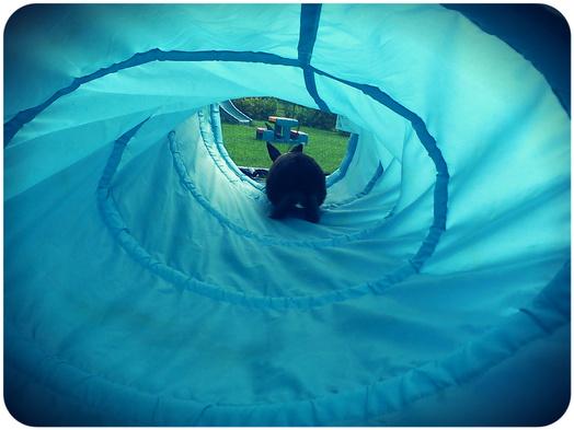 Dans le tunnel *.*