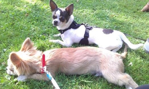 Nous au parc !