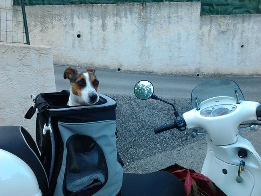 Moi et le Scooter c'est pour la vie !!!