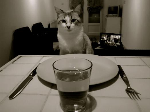 [•] Repas du soir, Bonsoir !