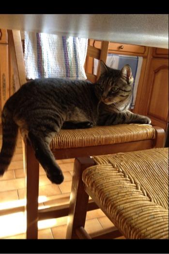 Sur la chaise, c'est l'pied !