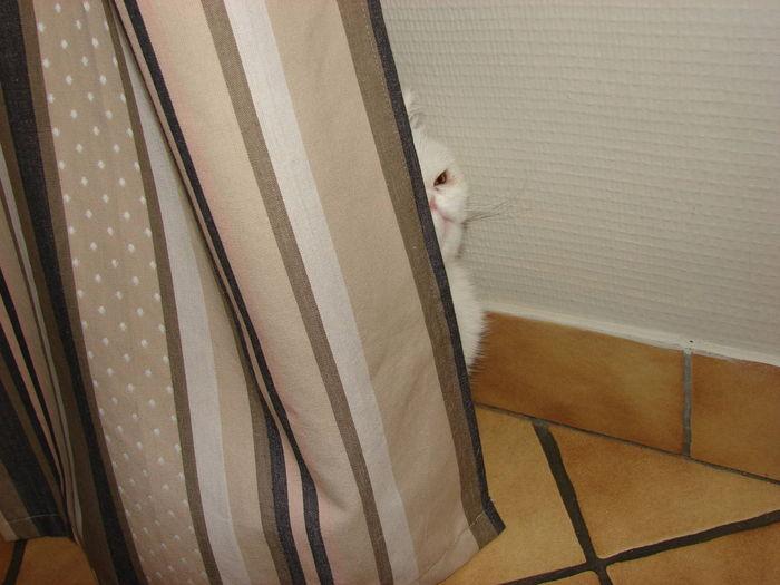 quand je me cache....
