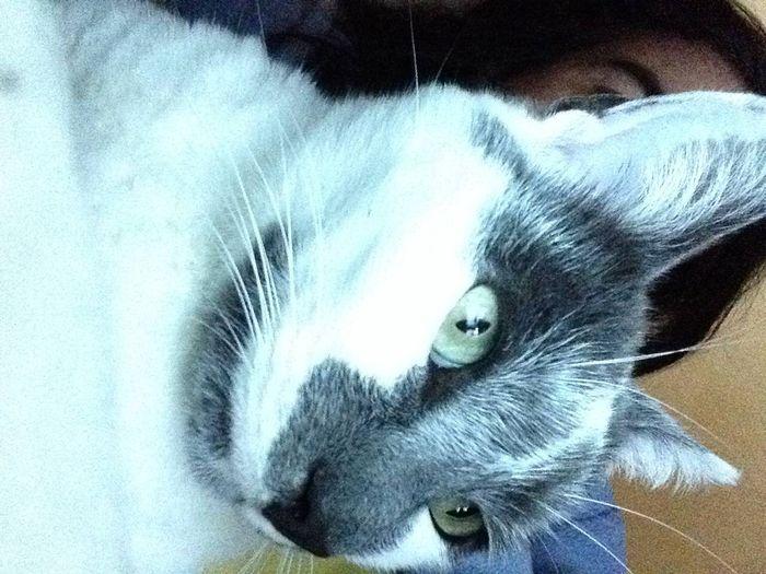 Selfie avec maman