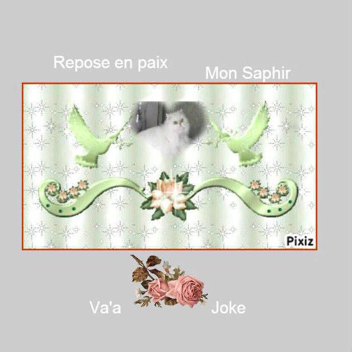 SAPHIR