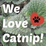 We Love Catnip!
