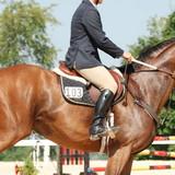 Astuces équitation ♥