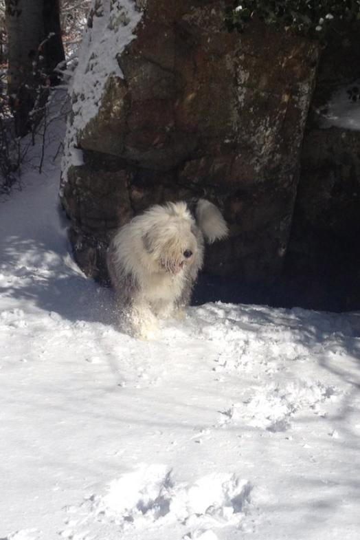 Giulia a la neige