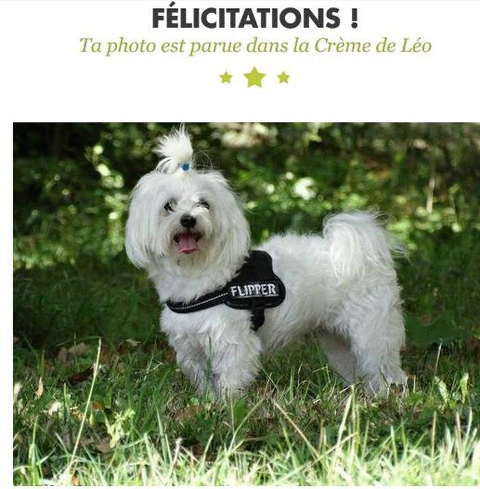 merci Léo ♥♥