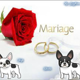 Mariage de Fidji & Charles
