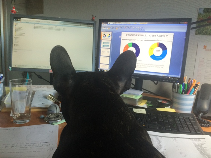Au boulot avec maman ! Je contrôle son travail ! :)