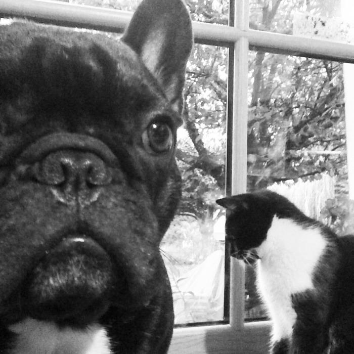 Selfie avec Milka ^^