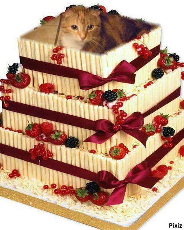 Joyeux anniversaire ma jolie amie Duchesse ♥