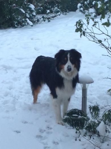 La neige!