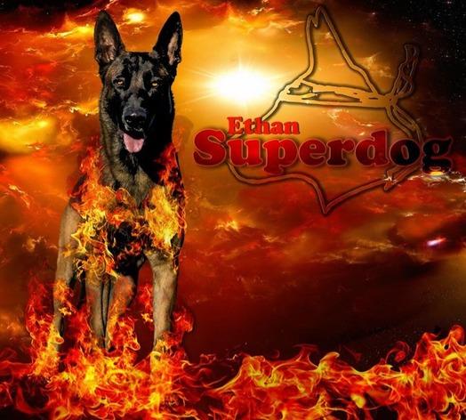 Ethan Superdog