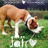 Jaïro