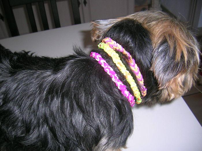 Les colliers sont superbes♥