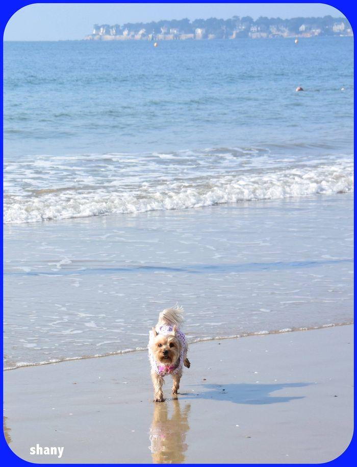 ❤  je suis tellement contente de courir dans l'eau..