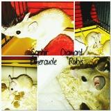Les souris mousquetaires
