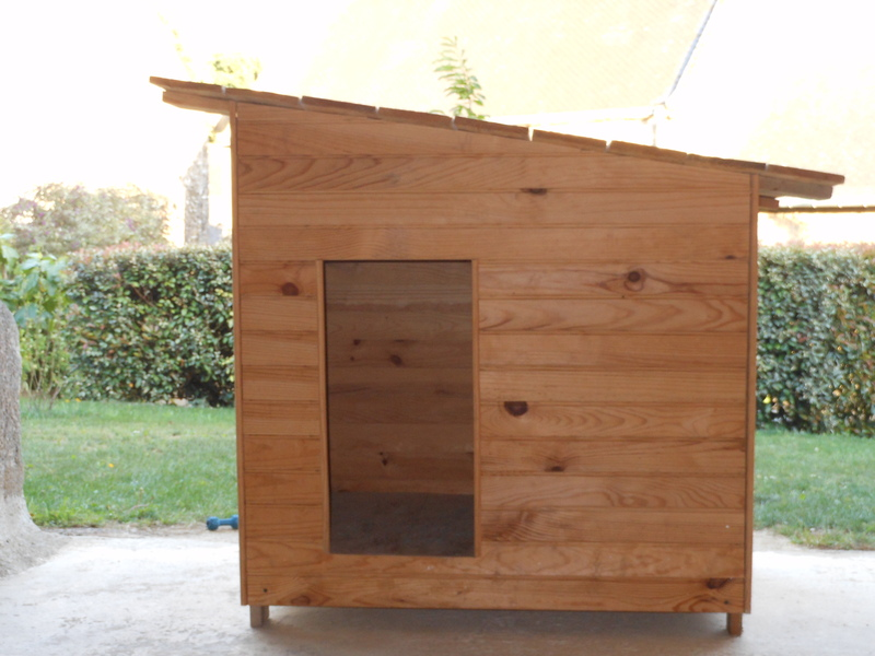 yummypets annonces d 39 animaux gratuites. Black Bedroom Furniture Sets. Home Design Ideas