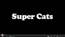 Super Cats! =^.^=
