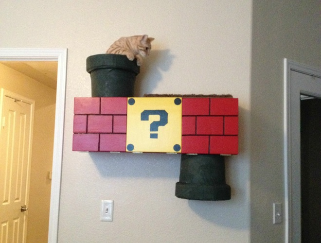 the mario cat tunnel so geek yummypets. Black Bedroom Furniture Sets. Home Design Ideas