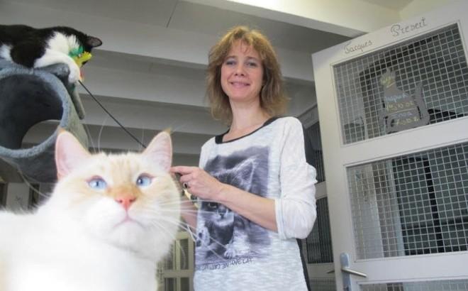 chat rencontre Montélimar