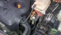 A puppy gets stuck in a car engine