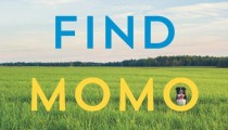 Momo is back, will you find him?