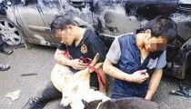 Dog thieves beaten by villagers