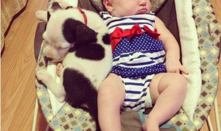 A baby human and a baby pit bull snuggling up