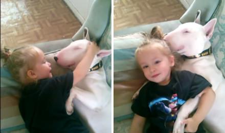 A beautiful friendship between a little girl and her bull terrier