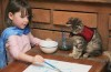 Autistic child paints with her therapy cat