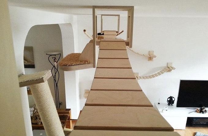 comment choisir un arbre chat yummypets. Black Bedroom Furniture Sets. Home Design Ideas