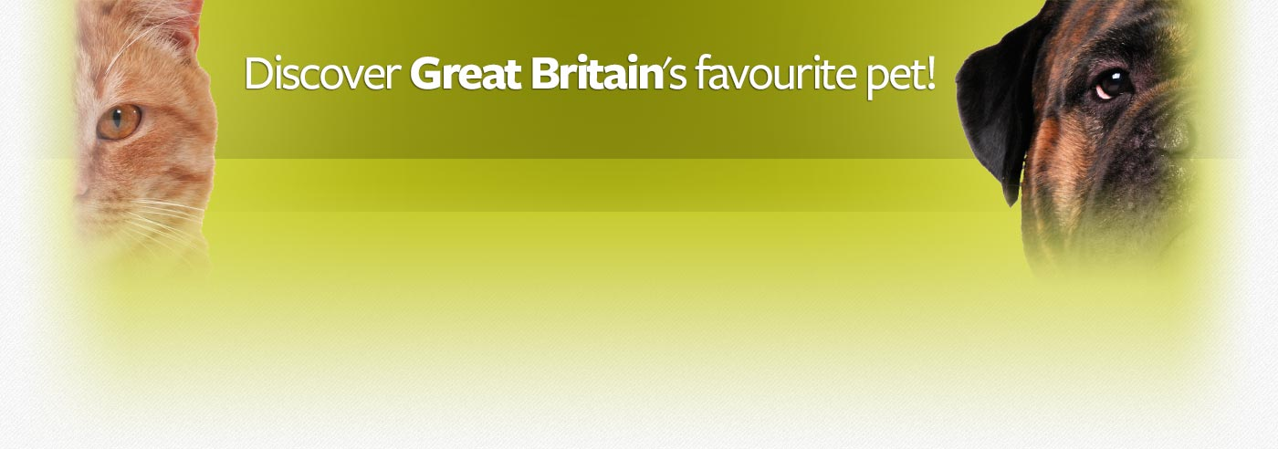 Great Britain, are we a nation of cat lovers or dogs lovers?