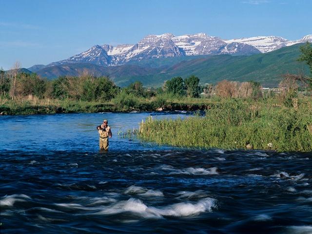 5 best utah rivers for summer fly fishing yobi adventures for Fly fishing utah