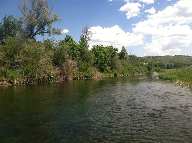 5 best utah rivers for summer fly fishing yobi adventures for Weber river fishing report