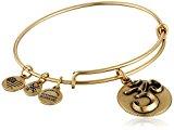 Alex and Ani Om III Expandable Rafaelian Gold Bangle Bracelet