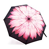 Automatic Travel Umbrella, Auto Open/close Foldable Rain Umbrella, Pink Flower - Waterproof, Windproof, Compact for Easy Carrying Totes -Durability Tested 5000 Times