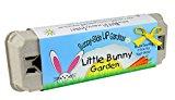Backyard Safari Company Sunny-Side Up Gardens, Little Bunny Garden