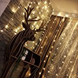Pendant Lighting Outdoor Lighting Decorative Lights Curtain Lights 100 LEDs Indoor/Outdoor Copper Wire Lights Christmas Lights for Gardens Patios Homes Parties and All Decorations by Okapia