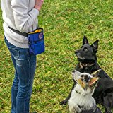 RokaPets-Dog Treat Pouch Blue-Orange with 2 Zippers,Adjustable Belt and Waste Bag for Training and Carries Pet Toys