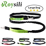 Roysili Hands Free Dog Leash, Premium Dual Handle Running Dog Leash, Lightweight Reflective Bungee Dog Leash for Medium and Large Dogs (Mediume & Large Dog(30lbs-100lbs), Green)