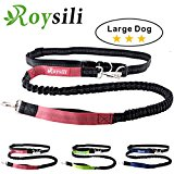 Roysili Hands Free Dog Leash, Premium Dual Handle Running Dog Leash, Lightweight Reflective Bungee Dog Leash for Medium and Large Dogs (Mediume & Large Dog(30lbs-100lbs), Red)