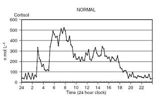 medite-niveis-de-cortisol-ao-longo-do-dia