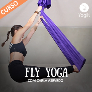 Curso Fly Yoga
